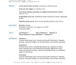 professional resume template modern resume 11 examples