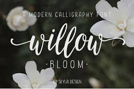 calligraphy font browse more than 4 700 calligraphy fonts creative market