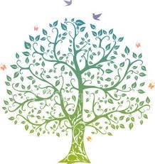 design family tree paso evolist co