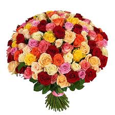 multicolored roses flower delivery 101 multicolored roses