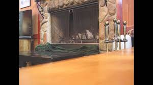 how to capture a bird stuck in your fireplace youtube