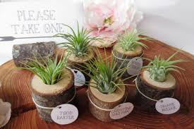 plant wedding favors plant inspired wedding