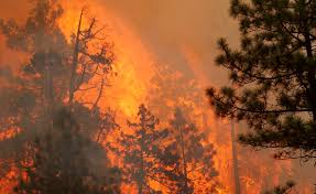 Oregon Forest Fires Map by Image Gallery Oregon Forest Fires