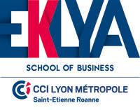 chambre commerce lyon eklya of business cci lyon métropole etienne roanne