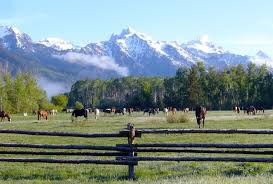 Wyoming Travel Words images Northwest wyoming dude ranch vacations the dude ranchers jpg