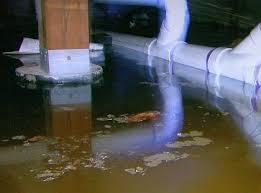 Backyard Oil Troubling Backyard Oil Spill Turns Long Island Couple U0027s Lives