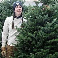 christmas tree sale forestry club