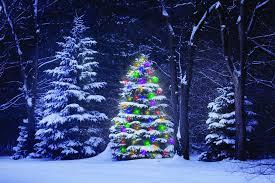 christmas lights in niagara falls ontario holiday entertainment in niagara