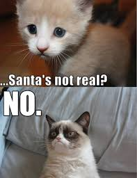 Original Grumpy Cat Meme - santa no grumpy cat know your meme