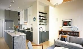 home design ideas for condos wondrous condo interior design ideas nice small decorating home