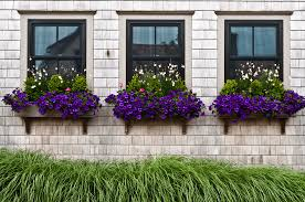 What To Plant In Window Flower Boxes - modern window treatment ideas freshome