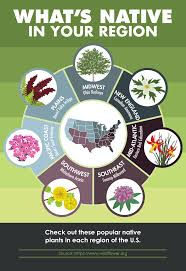 plants native to ohio a quick guide to native plants across the u s agr