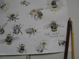 bumble bees agnesandcora page 2