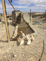 terlingua bottle house might be the most unique home in america