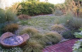ornamental grass maintenance lifestyle landscapes