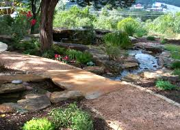 central texas native plants 19 best xeriscape images on pinterest landscaping ideas