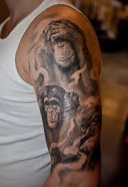 great chimpanzee pictures tattooimages biz