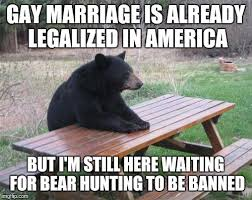 Gay Bear Meme - bad luck bear meme imgflip