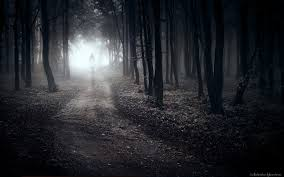 wallpaper walking alone in forest path lonely sad wide