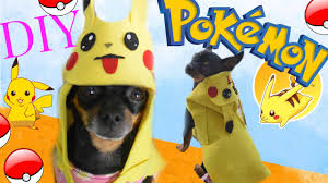 pokemon go halloween costume how to make a costume for your dog pokemon go youtube