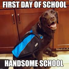 First Day Of School Funny Memes - first day of school imgflip