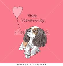 valentines day card cavalier king charles stock vector 551303929
