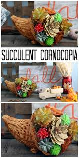 thanksgiving fall pictures succulent cornucopia for thanksgiving the country chic cottage