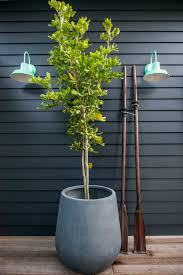 exterior wall lights from barn light australia wall colour is