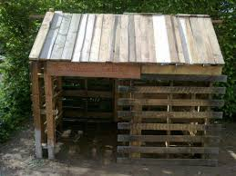 best 25 goat shed ideas on pinterest goat shelter goat house