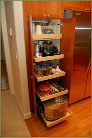 pull out cabinet organizer kitchen home design ideas