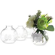 The Handpicked Vase Amazon Com Chive U2013 Caterpillar Small Clear Glass Bud Vase For