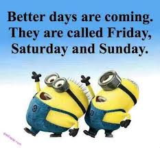 Minions Birthday Meme - funny minion quotes about weekends minions pinterest funny