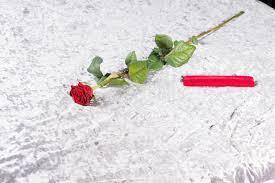 copriletti romantici rosa rossa e regalo romantici su un copriletto immagine stock