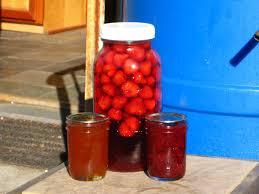 Teh Fruity fruity
