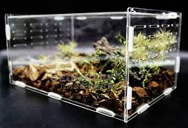 acrylic reptile terrarium for spiders gecko lizard and other small