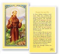 pet prayer prayer for my pet st francis laminated prayer cards 25 pack