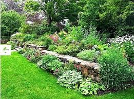Garden Rock Wall Rock Wall Garden A Blade Of Grass Designs Iphone Wallpaper