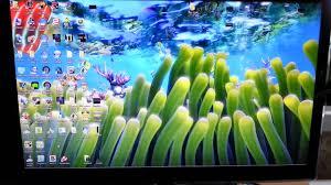 sim aquarium 3 live wallpaper mode in windows 8 youtube