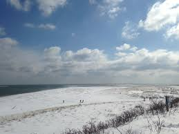 icy ocean mary richmond u0027s cape cod art and nature