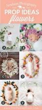 halloween photography props best 25 fall newborn photography ideas on pinterest fall baby