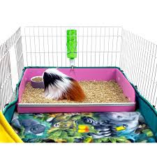 Guinea Pig Cages Cheap Midwest Diner A Kitchen Insert For The Midwest Guinea Pig Cage