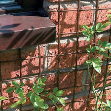 Trellis For Climbers Climbing Plant Mesh Garden U0026 Patio Ebay