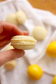 weekly csa recipe meyer lemon french macarons u2014 edible baja