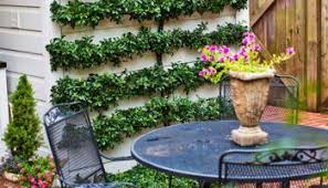 Low Maintenance Backyard Ideas 20 Easy Fire Pit Backyard Ideas U2013 Modernhousemagz