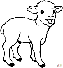 marvelous decoration lamb coloring page sheep printable another