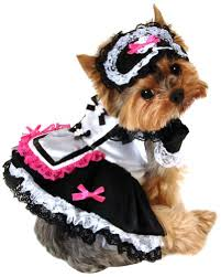Cheap Dog Costumes Halloween Dogs Halloween Costumes Fraser Valley Gifts Souvenirs