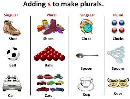 lesson plan of plurals english grade 3 effective and creative