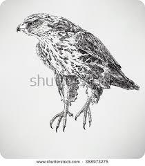 royalty free hand drawn sketch of australian u2026 152659406 stock