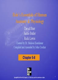Human Physiology And Anatomy Pdf Hole U0027s Essentials Of Human Anatomy U0026 Physiology Pdf Drive