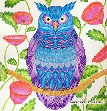 501 Best Tropical World Coloring Ideas Images On Pinterest Owl Coloring Ideas